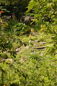 Stone steps subtly point the way to garden seating at the top of a garden on a steep slope.