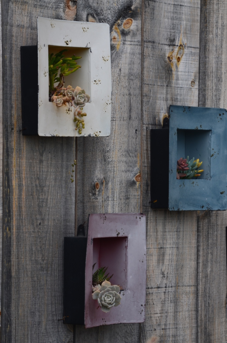 An outdoor gallery of metal frames contain living succulents.