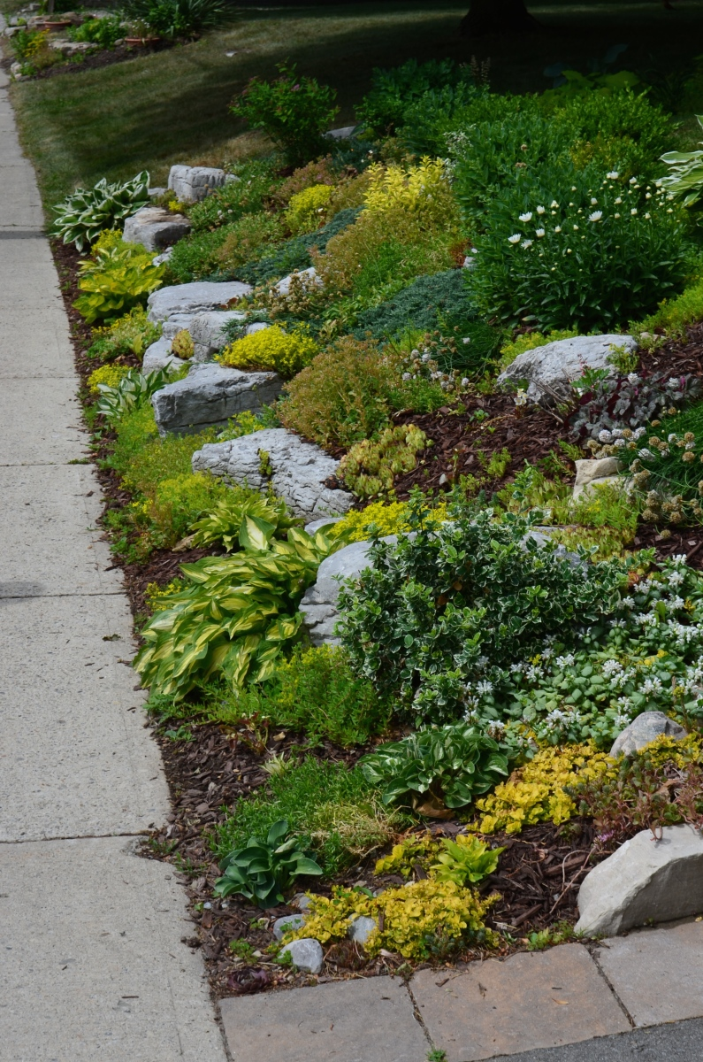 Rocks in a sloping garden bed next to a sidewalk.