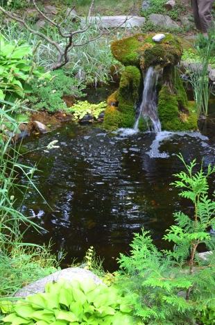 The moss covered water feature with pond in a woodland garden