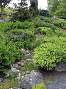 Differing rocks create an interesting addition to a garden.