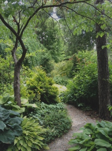 Trees, shrubs and perennials are placed in the garden at Lost Horizons to contrast in shape and colour.