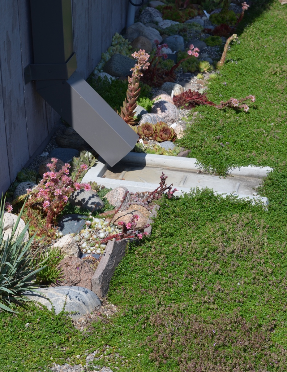 A slim bed next to a house is mulched with small stones.
