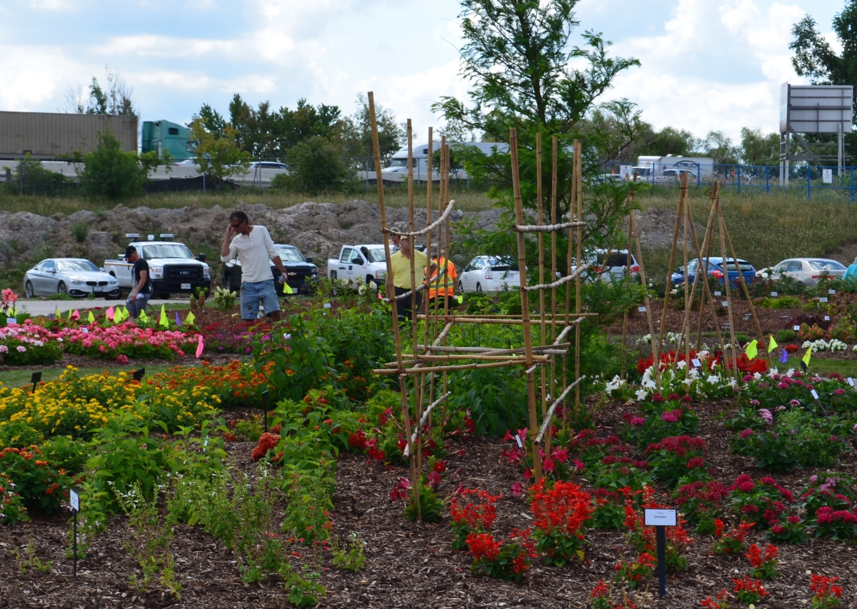 Trial gardens bordered by parking lots and highway.