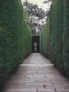 Two long, tall hedges form a corridor in a garden at Sissinghurst.