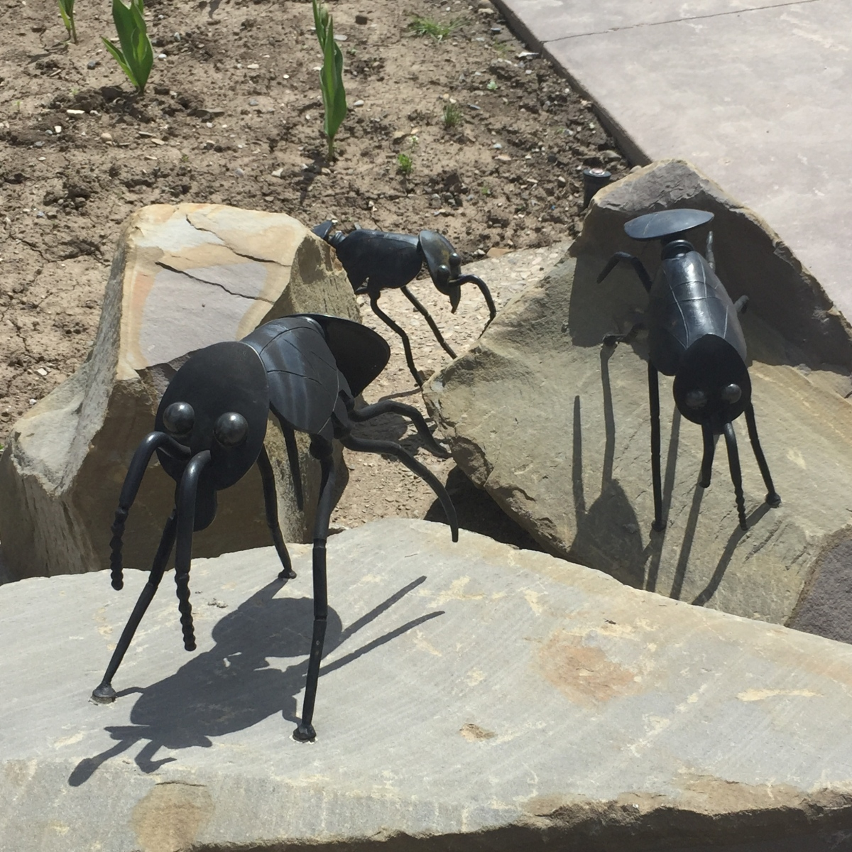 Small metal ant sculptures