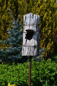 A piece of dead tree trunk is used to make a bird house.