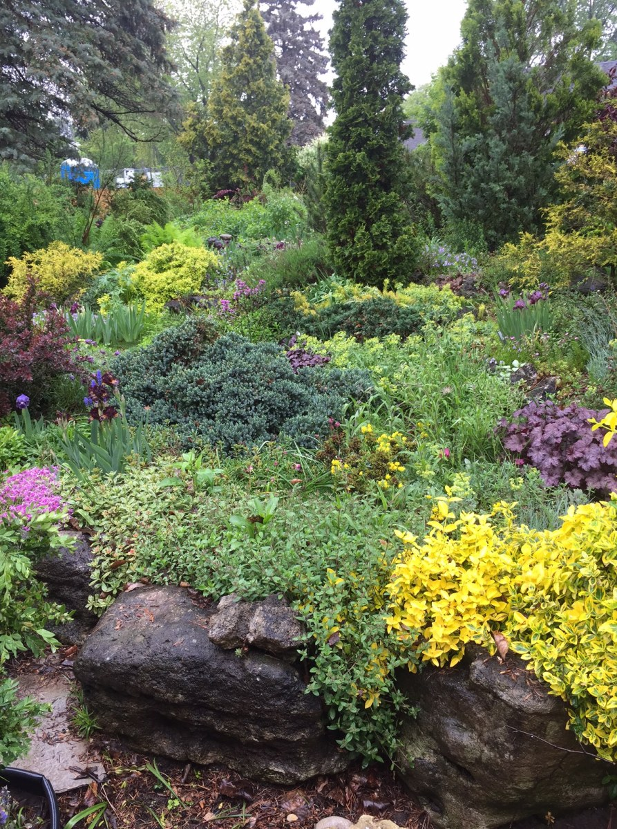 A living tapestry of colours and textures in a front garden filled to capacity