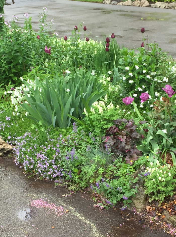 The space between two driveways is filled with flowering plants.