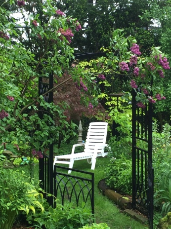 A small space in a filled back garden provides seating for one.
