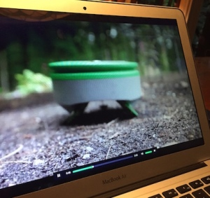 Video still of Tertill, a robotic weeder.