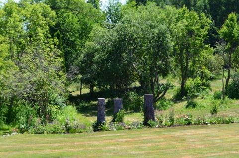 Three tall tree stumps make for sculptural interest in a garden.