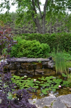 Within the enclosed garden is a small pond.