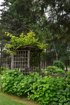 The entrance to the enclosed garden adds rustic vertical interest.